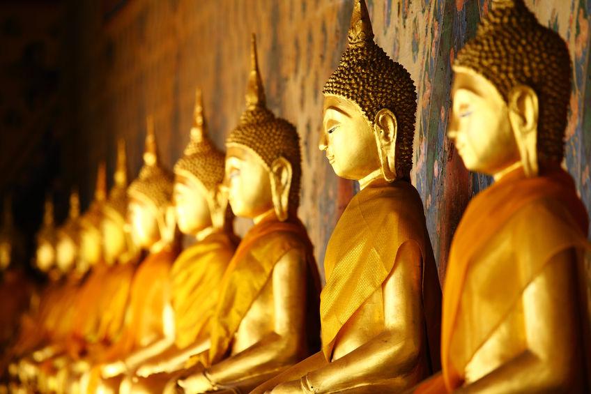 mindfulnees on line torino