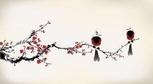 mindfulness interpersonale torino